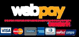 Logo Webpay blanco.png