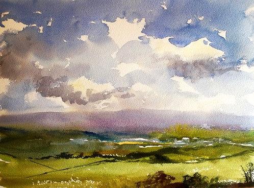 Overlooking Dartmoor