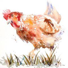 """""""Pecking Order"""""""