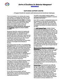 1-NSC-2-page description-REVISED.jpg
