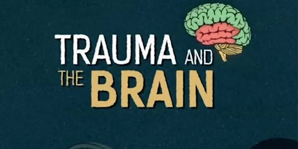 Part 1: Trauma and the Brain - how it affects behaviour and learning