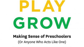 Three Things I Discovered Writing Rest, Play, Grow: Making Sense of Preschoolers