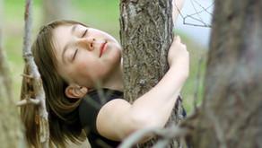 Les enfants nécessitent un endroit sécurisant où ils peuvent ressentir leurs émotions