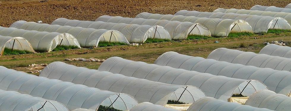 sites-agricoles-ip-mirador.jpg