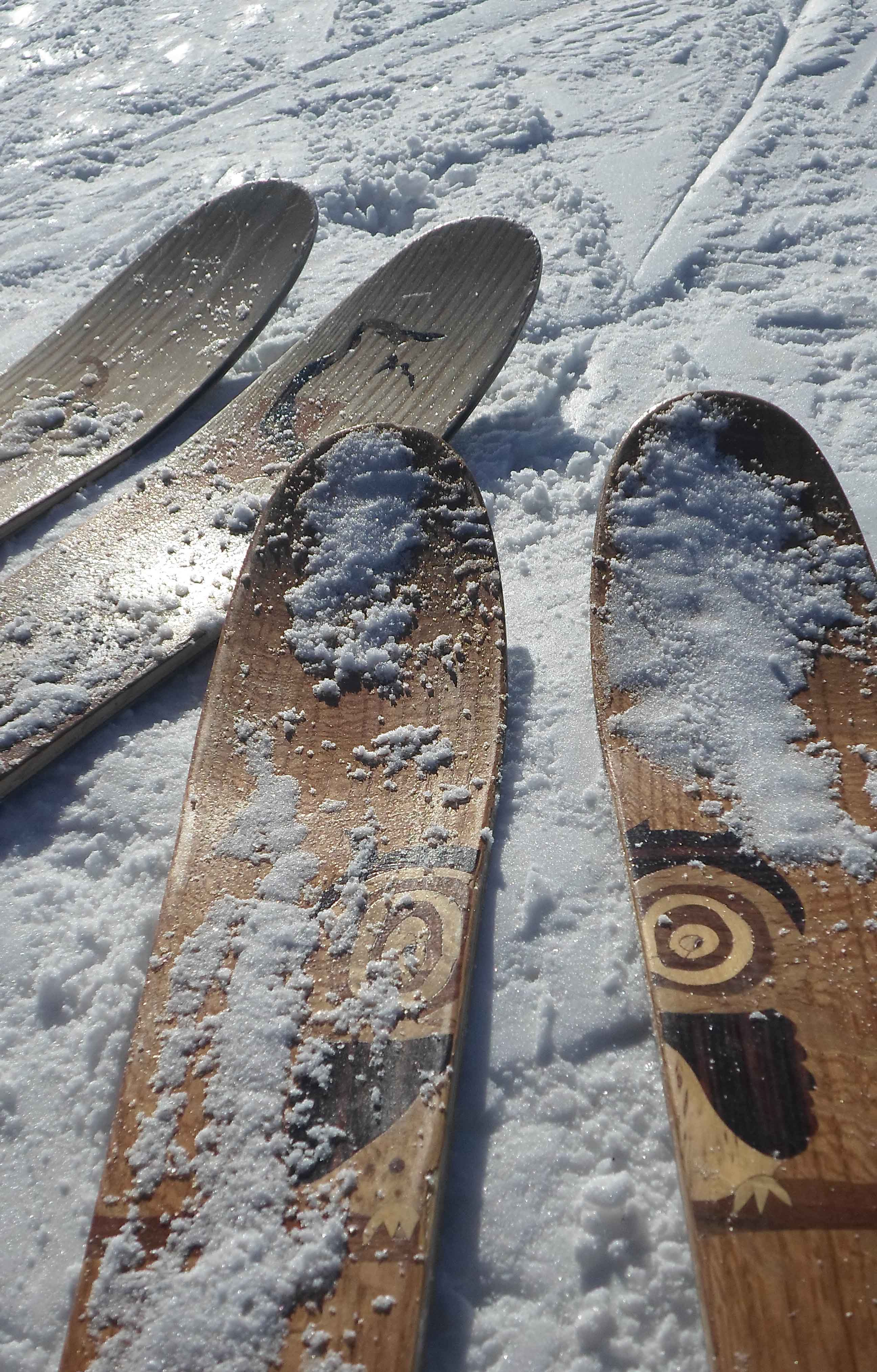 005 Amon Dava ski bois skis sol