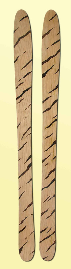 amon dava skis bois zebre