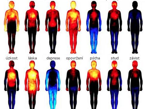 Tělesné mapy emocí