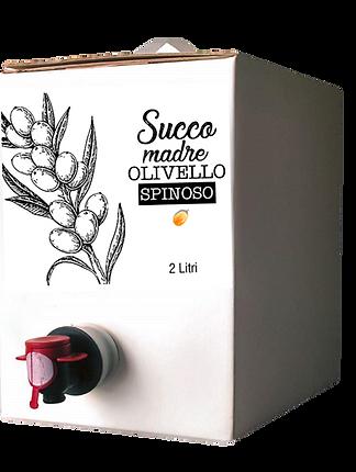 04_1_Bag in Box Succo madre ollivello sp