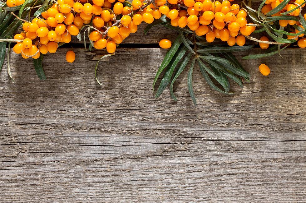 Rami, bacche e foglie di olivello spinoso sopra a delle tavole di legno