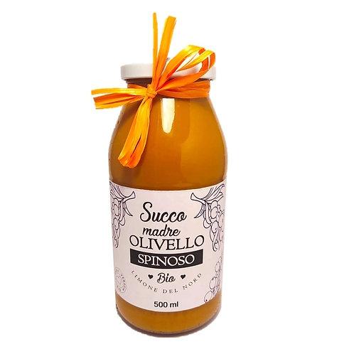 Succo di olivello spinoso