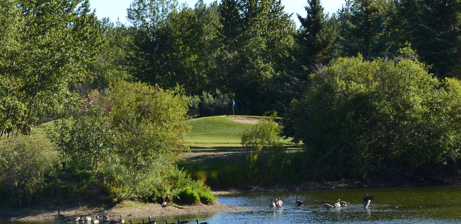 golf 275.JPG