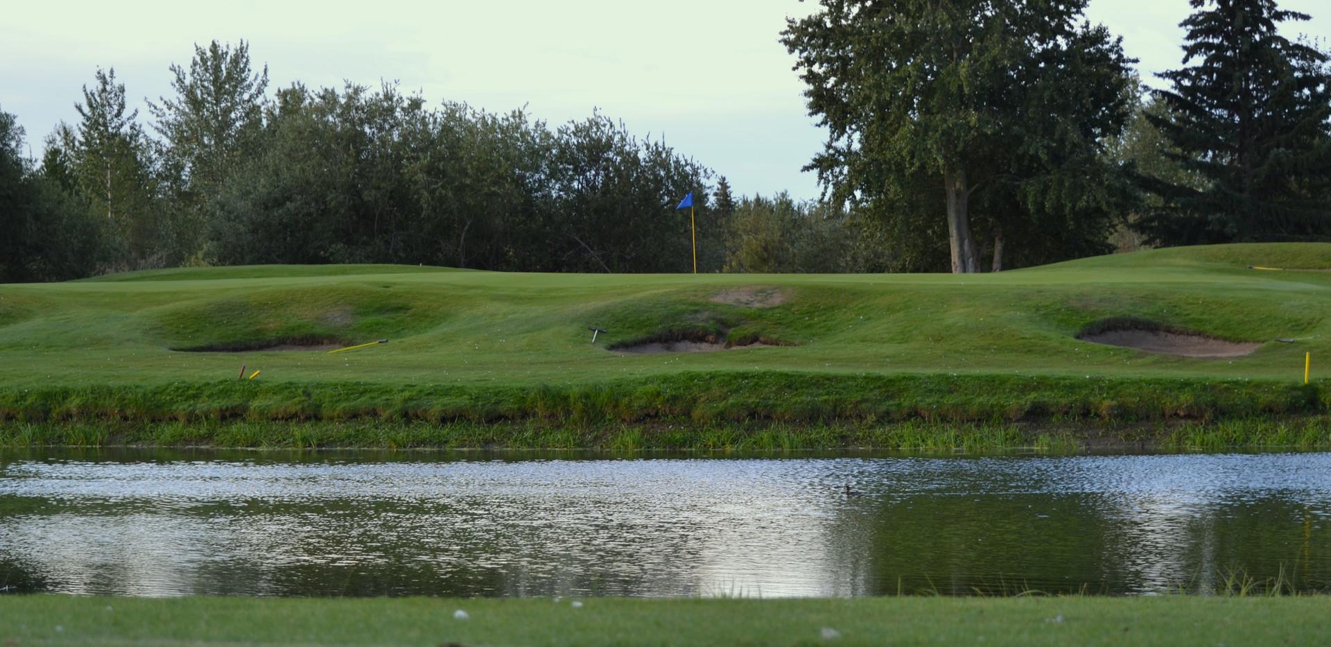 golf 194.JPG