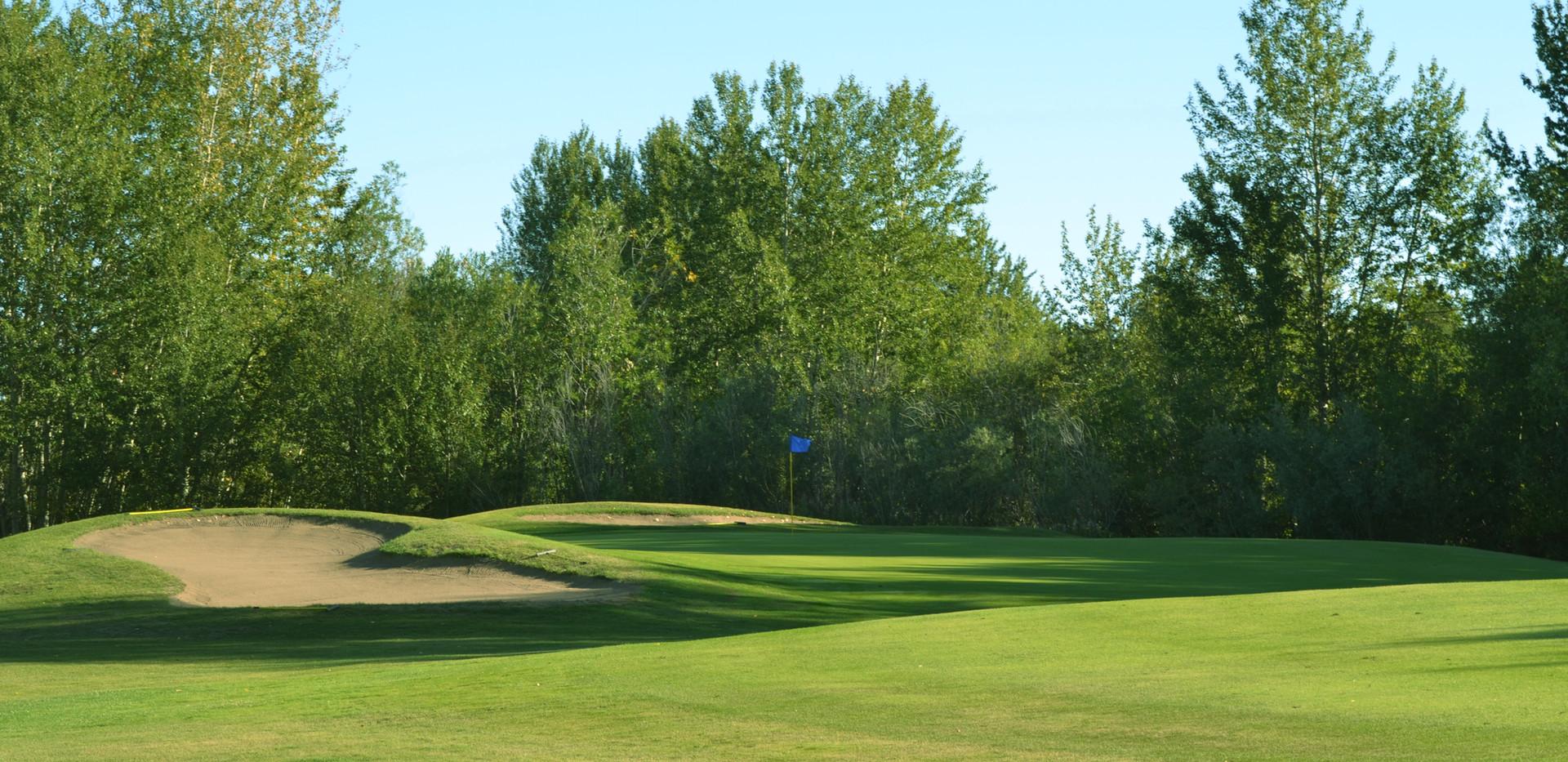 golf 320.JPG