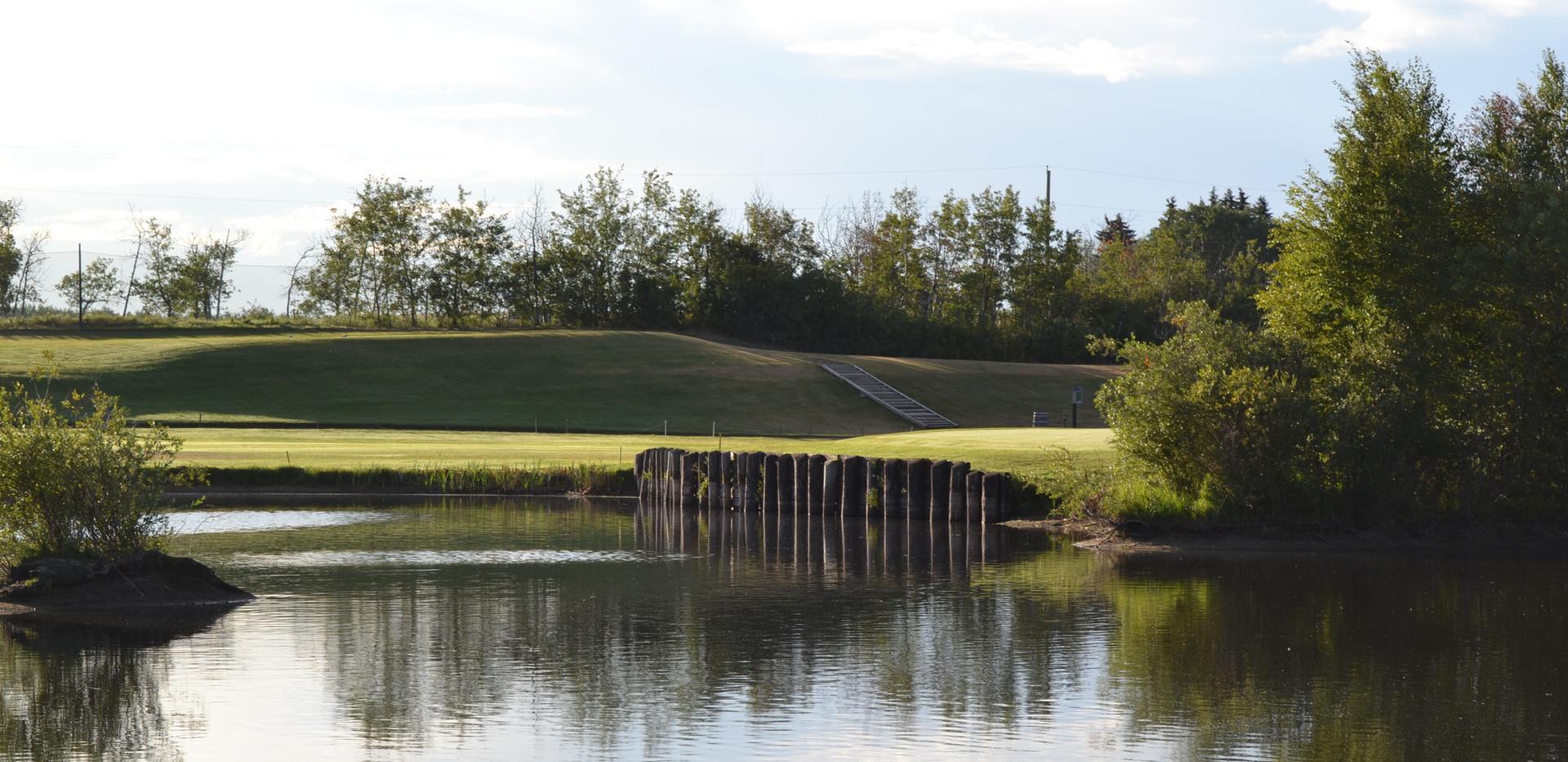 golf 207.JPG