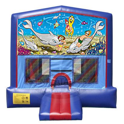 Ocean Bouncer