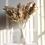 Thumbnail: Bouquet Pampa pour décoration