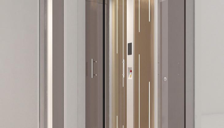 IconLift-Luxury-Homelift-G2.jpg