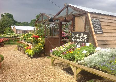 Setley-Ridge-Garden-Centre.jpg