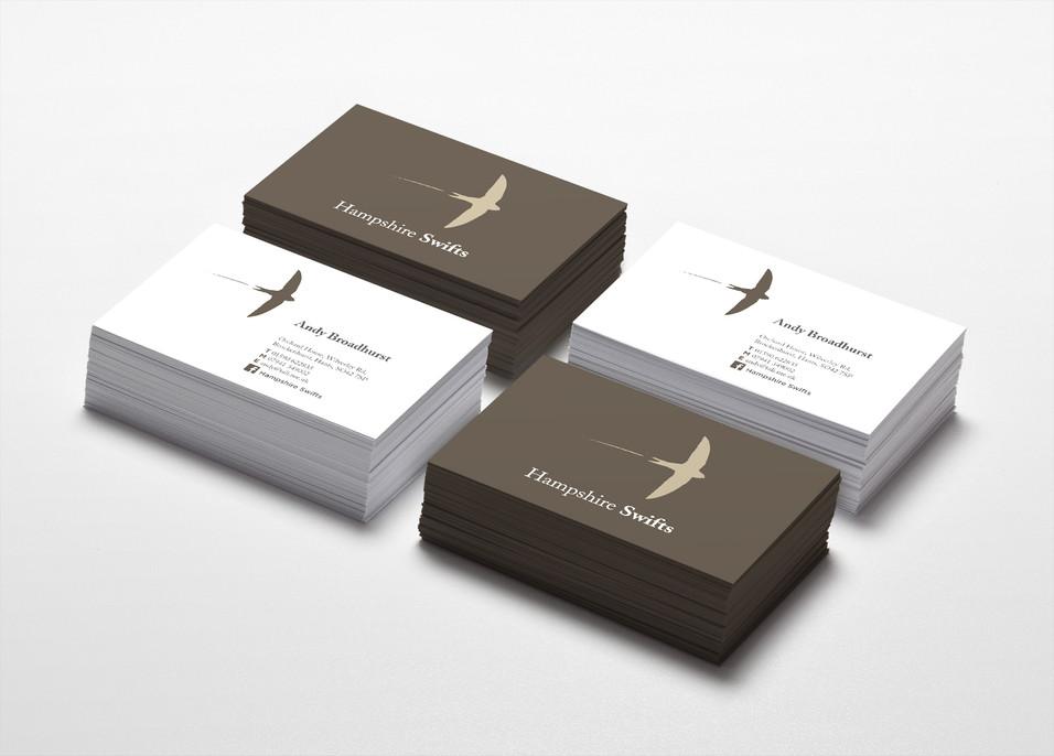 Hampshire Swifts Colorful Business Card