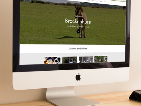 Visit Brockenhusrt