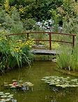 Garden Design Brockenhurst