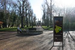 Daisy Cemetery vertical fr copy