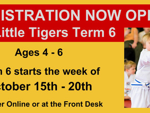 Little Tiger Registration Now Open!