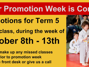 Little Tiger Term 5 Promotions