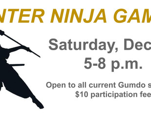 Winter Ninja Games