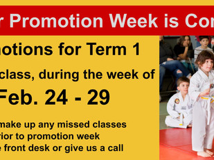 Little Tiger Term 1 Promotions