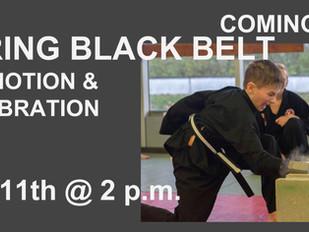 Spring Black Belt Promotion & Celebration