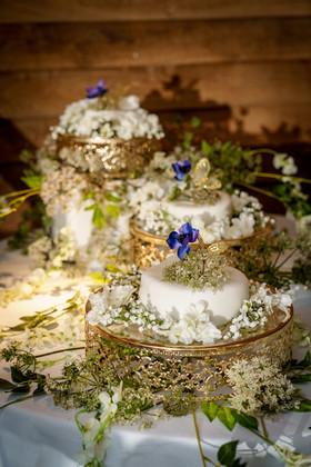 WeddingFood3TierCakePortraitMS(DSA03193).jpg