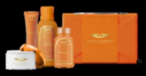 Orange-Gift-2.png