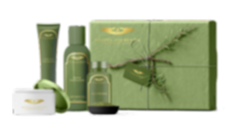Green-Gift-2.png