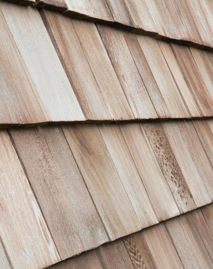 Cedar Tile