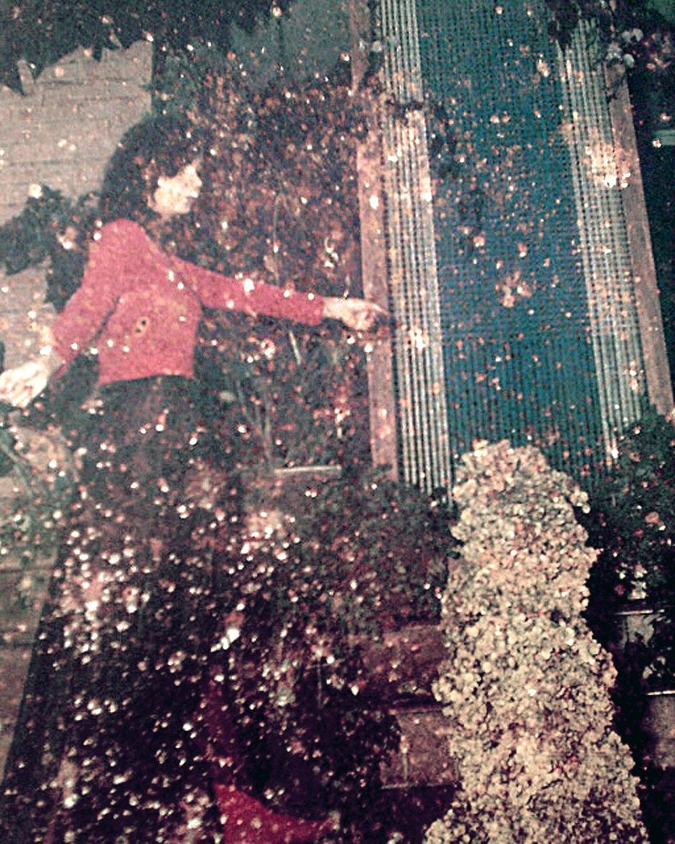 Mulher, o erótico na Natureza (1977)