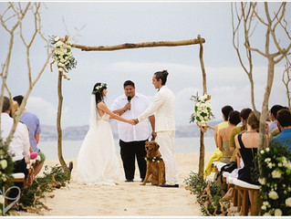 Beach Destination Wedding With A Cute Golden Retriever