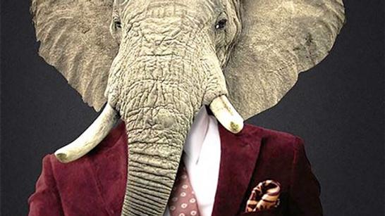 Tissu Imprimé Panneau Elephant 70x70cm