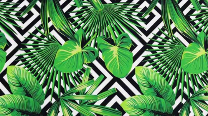 Tissu Imprimé Feuilles Tropical