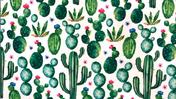 Tissu Imprimé Cactus