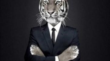 Tissu Imprimé Panneau Tigre 70x70