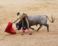 Tjurfäktare Spanien
