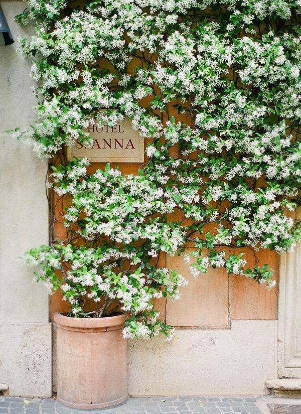 Hotel S. Anna Rome