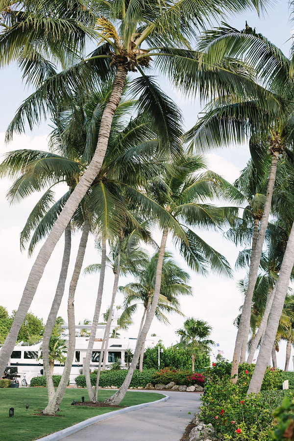 ocean reef key largo wedding