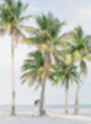 Kat + Nick - Miami Engagement Photograph