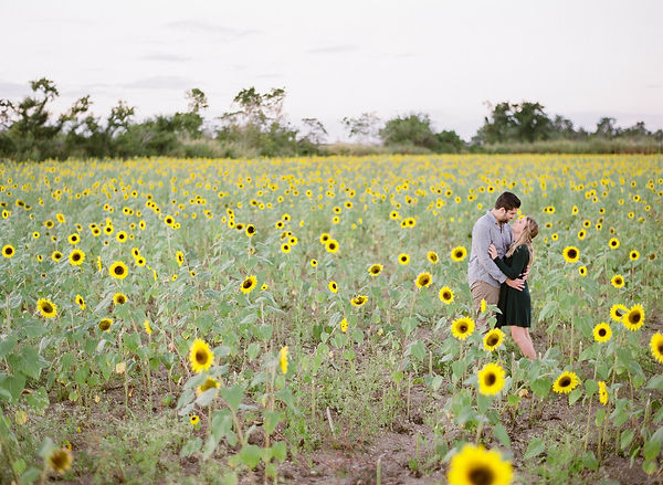 engagement shoot in a sun flower field