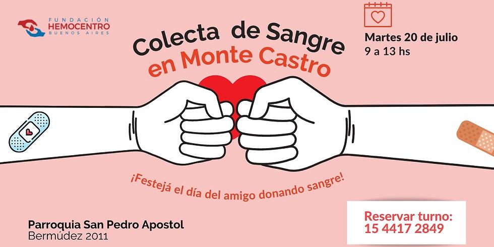 Colecta en Monte Castro