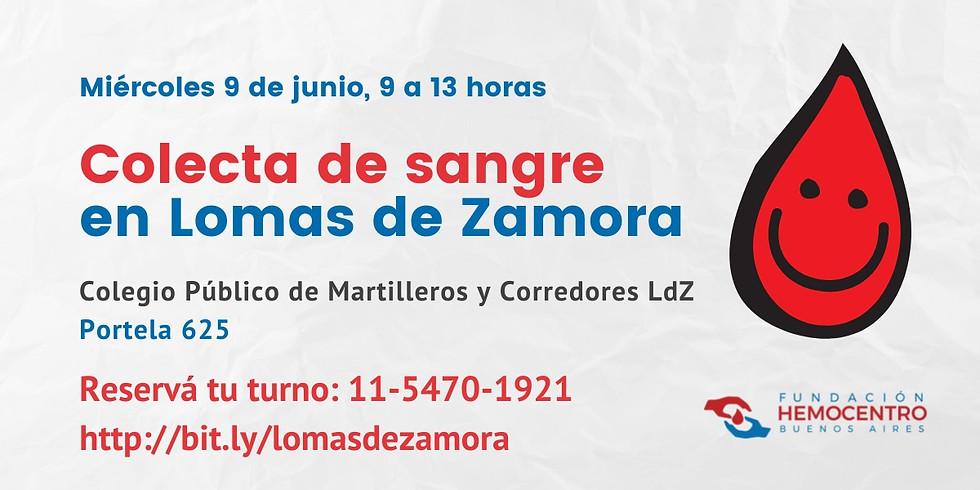 Colecta en Colegio Público de Martilleros y Corredores de Lomas de Zamora