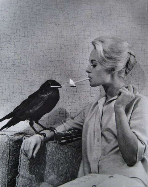 "Tippi Hedren, ""The Birds""  Copyright by Universal Studios and other respective production studios and distributors. Intended for editorial use only."