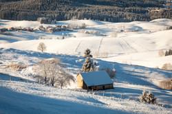 snow fields asiago